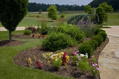 Landscape Contractor in Johnson City, Tennessee